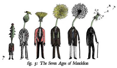 seven stages of man The concept of seven ages derives from mediaeval philosophy, which  constructed groups of seven, as in the seven deadly sins, for.